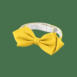 90854-CONCEPT Fliege, Herren-gelb